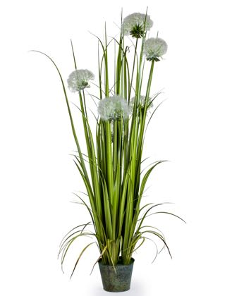 This striking artificial tall grass has pom pom type flower heads that are fluffy! One of my faves! Stands in a pot at 155cm. So real and lifelike!