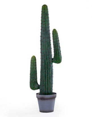 This medium artificial desert cactus is wonderfully coloured, finished and textured. It looks like a real one but thankfully without the sharp prickles, stands 125cm tall