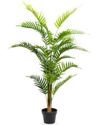 Feel, texture and colour are what make this artificial fern soo good. Great finish and detail to the fronds. Perfect anywhere indoors. Stands 120cm tall
