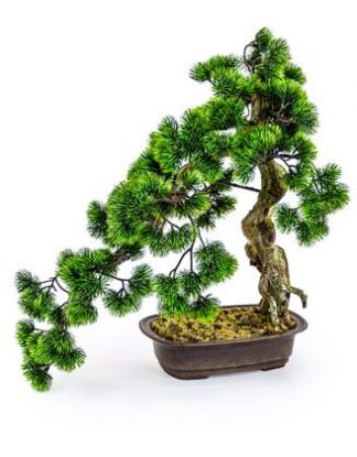 This superb large artificial Bonsai tree has stunning shape, colour and texture. Great feel of the Japanese art form! Stands at 55 cm. My new Must Have!