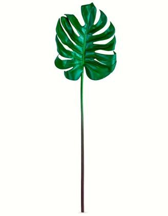 This palm leaf stem is ideal for adding the lush green tropics to your home. Perfect in any roomthey are so real. 82cm. Great value, fabulous quality.