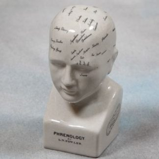 Trace your emotions with our small phrenology head ornament! Off white glossy ceramic with black writing. Great gift! 20 x 9 x 9cm. Felt pads on base.