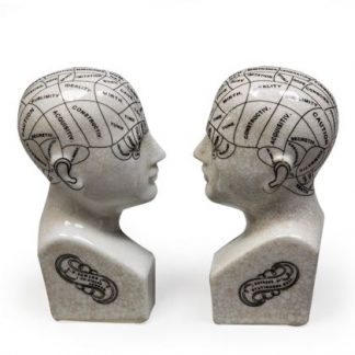This super little pair of Phrenology head bookends measure 21 x 9 x 4 cm each. White ceramic with black writing and a glossy crackle glaze. Great Gift!
