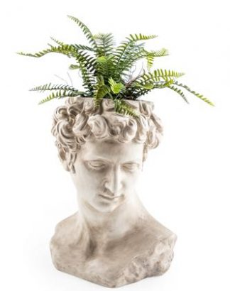 Superb stone effect David bust planter! Superb cream distressed colour and finish. What will you plant for his hair? 42 x 32 x 28cm.