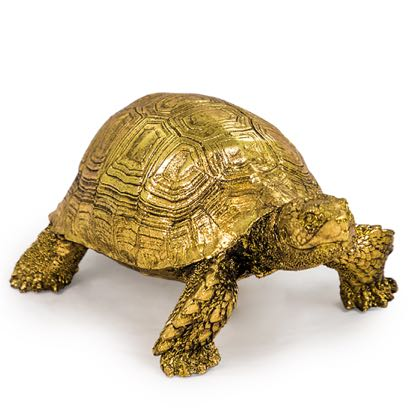 Meet Gilbert our very own small gold tortoise ornament. Made of resin, very lightweight but beautifully finished in gold. H8 x W12 x D19cm.