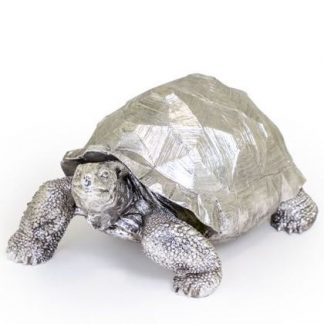 Meet Terry our huge silver tortoise ornament! He is superbly detailed, hand finished in a soft silver paint. 40 x 32 x 60cm. Great gift, great price.