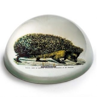 This glass hedgehog paperweight is a thoughtful, beautiful gift. Made of smooth glass with a vintage style image and a felt bottom too!! 4 x 10 x 10cm.