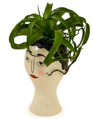 This lady face vase, with her blusher, groomed eyebrows and red lipstick. Stylish and different Glazed cream ceramic, perfect gift. 26.5 x 15.5 x 15.5cm.