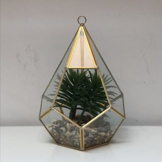 "This small gold terrarium is so elegant. Gold metal and hexagonal shape with glass panes. ""Ready made"" pack complete with plant and gravel. 23 x 17 x 17cm"