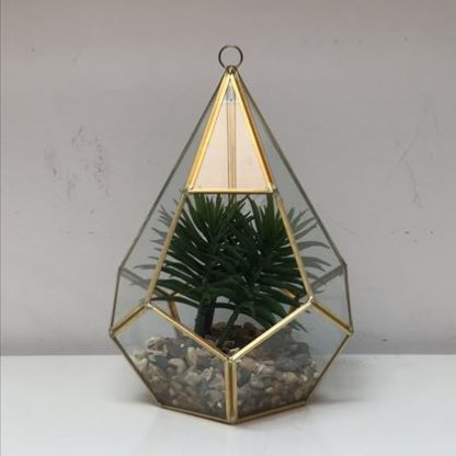 """This small gold terrarium is so elegant. Gold metal and hexagonal shape with glass panes. """"Ready made"""" pack complete with plant and gravel. 23 x 17 x 17cm"""