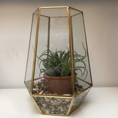Elegant and stylish hexagonal gold terrarium. Complete with washed pea gravel and fake plant. easy gift for anyone. H26 x W21 x D21cm