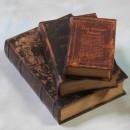 Famous Classics Storage Books